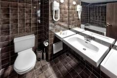 3standard WC[96]
