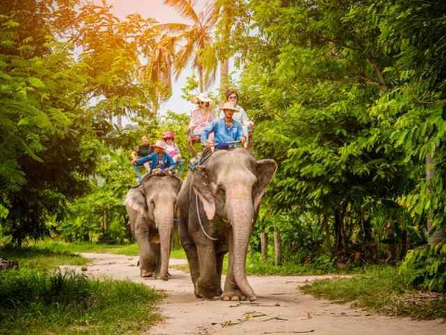 Тајланд – Нова Година 2020 – Сигурна Реализација