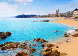 Шпанија – 8ми Септември – Авионска Програма